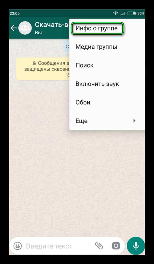 Пункт Инфо о группе WhatsApp