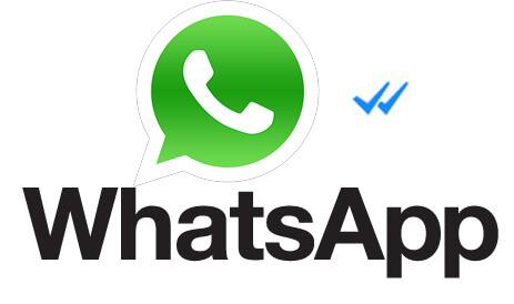 Изображение галочек в WhatsApp