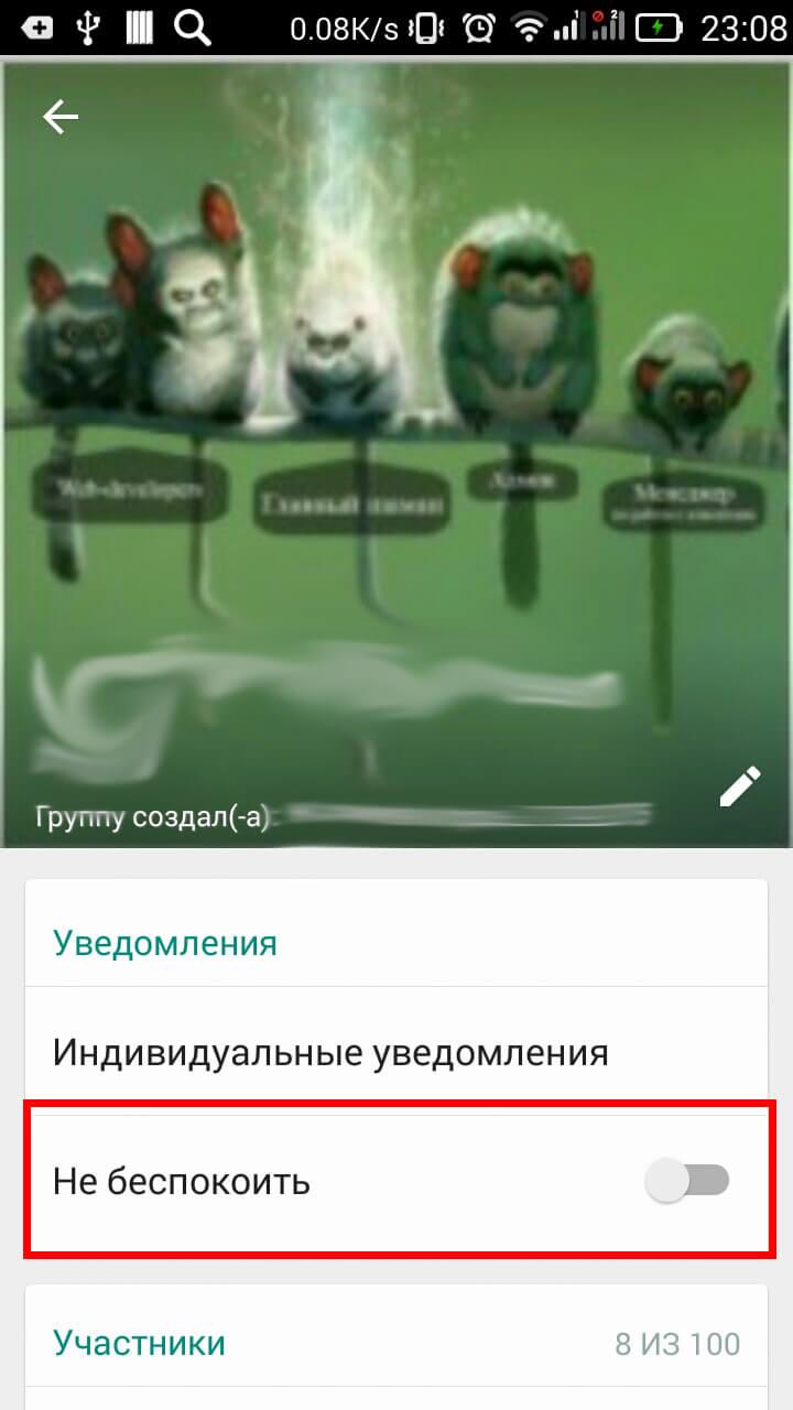 Функция «не беспокоить» в WhatsApp