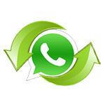 Как перенести переписку WhatsApp на другой телефон