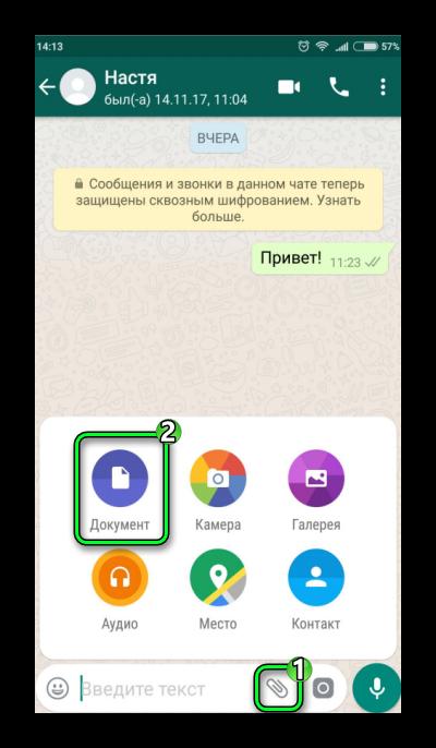 Пересылка файлов WhatsApp