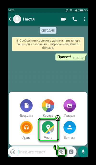 Приложение геолокации в чате WhatsApp