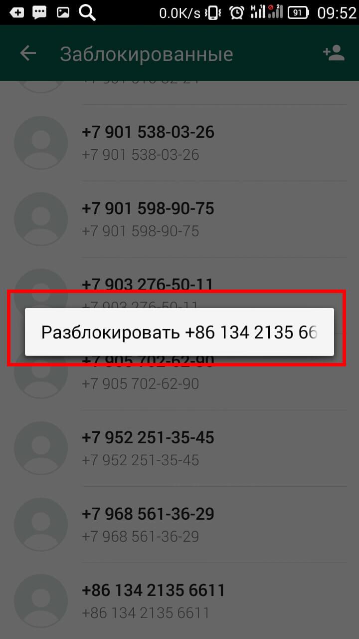 Как разблокировать контакт в WhatsApp