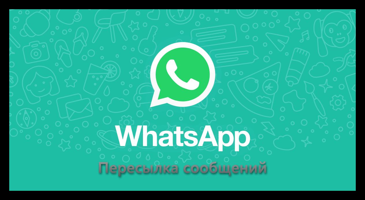 Пересылка сообщений WhatsApp