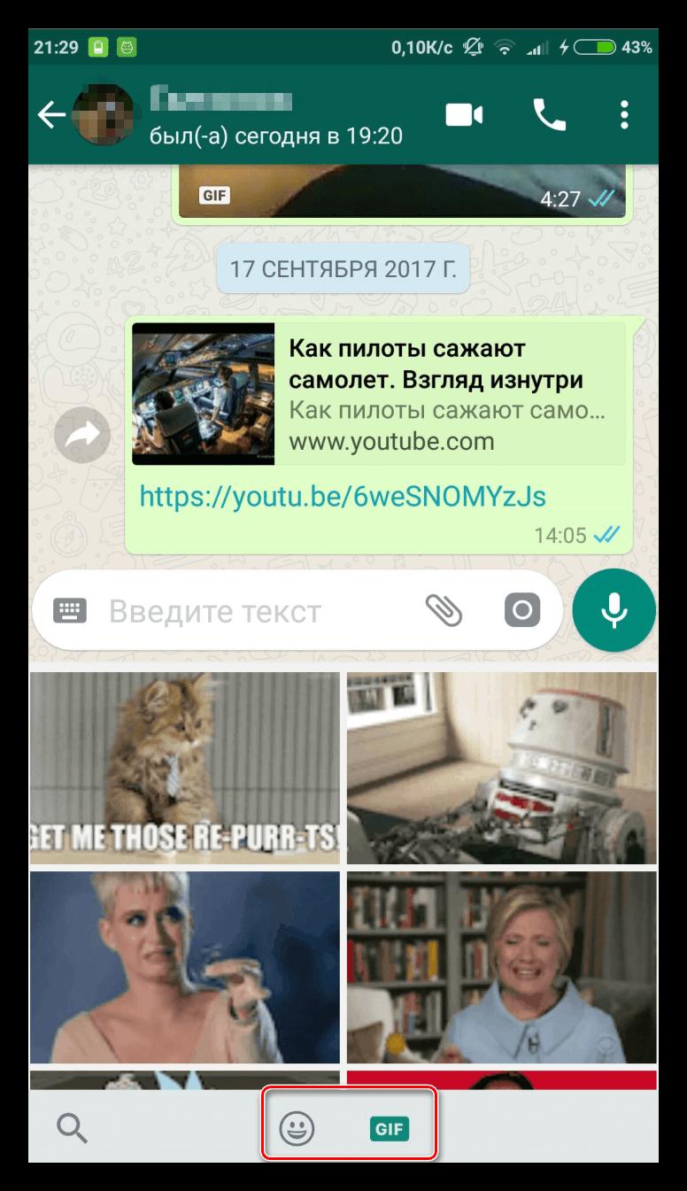 Как отправить gif в WhatsApp